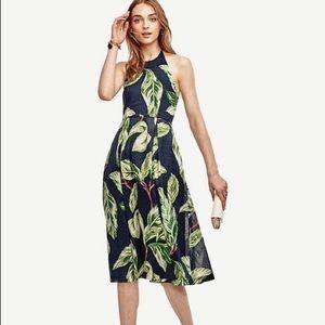 Ann Taylor   NWOT Amalfi Palm Leaf Halter Dress
